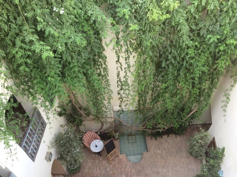 View from the top: the courtyard of our riad